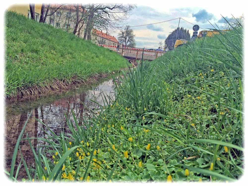 Großstadtidylle mit Brückenbaustelle: Der Blasewitz-Grunaer-Landgraben an der Hepkestraße. Foto: Heiko Weckbrodt