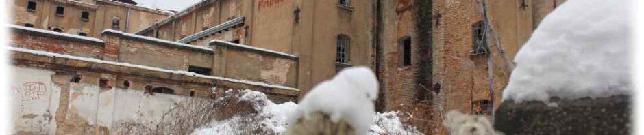 Auf diesem Archivbild vom vom Dezember 2014 sind noch gut die DDR-Propagandaparolen an der längst aufgegebenen Malzfabrik in Dresden-Niedersedlitz zu sehen. Foto: Heiko Weckbrodt