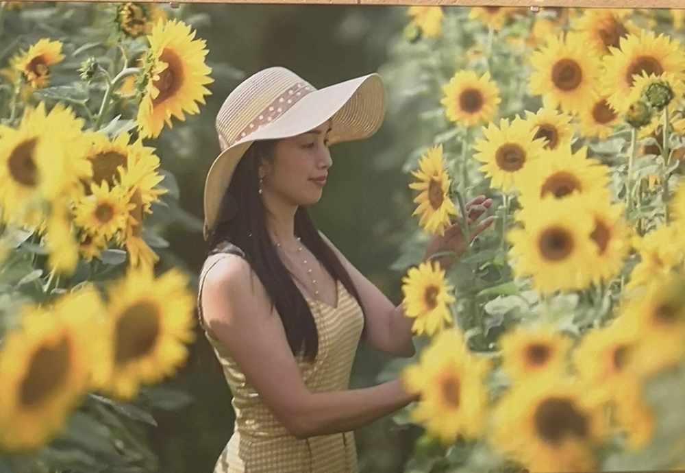 Dieses Foto einer Dame im Sonnenblumenfeld ist in der klassischen Anmutung derzeit in Vietnam üblicher Lichtbildstilistik gehalten. Foto: Erick Dam